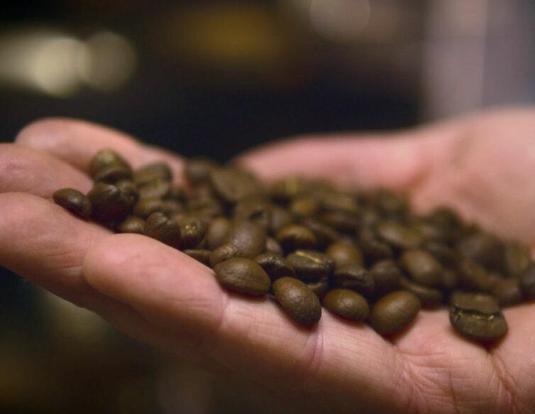 Artisan Coffee Roaster